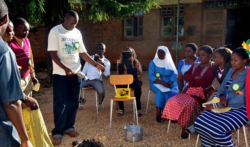 La experiencia de Anamed con Artemisia en el tratamiento de la malaria