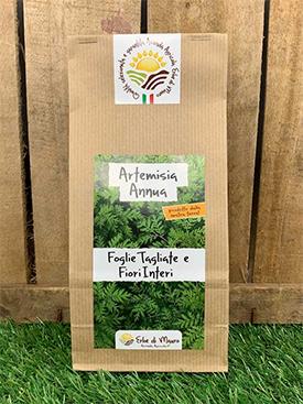 té de hierbas de artemisia annua
